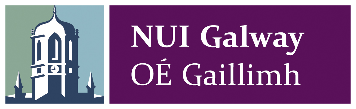 nui galway masters thesis